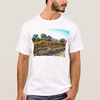 Uvas de vino en el condado de Mendocino, Playera