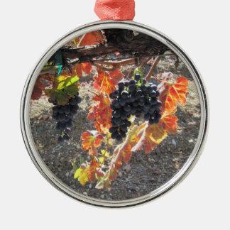 Uvas de Zenaida listas para la cosecha Ornamento Para Arbol De Navidad