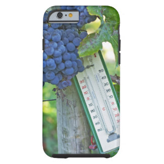 Uvas del Merlot en el la Figeac grave, a del Funda Para iPhone 6 Tough