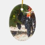 Uvas del país vinícola adorno de navidad