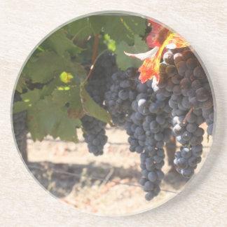 Uvas del país vinícola posavasos de arenisca