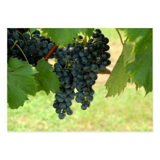 Uvas del viñedo tarjeta de visita