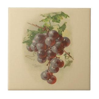 Uvas del vintage azulejos cerámicos