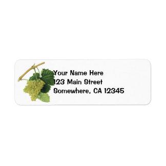 Uvas en la vid, fruta del vino blanco de la comida etiqueta de remite