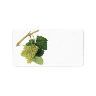 Uvas en la vid, fruta del vino blanco de la comida etiquetas de dirección