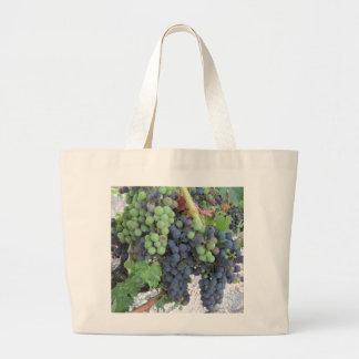 Uvas en la vid, viñedo de la colina de Aron Bolsa