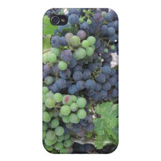 Uvas en la vid, viñedo de la colina de Aron iPhone 4/4S Carcasa