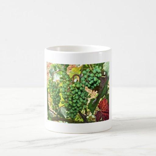 Uvas en una taza del viñedo