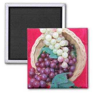 Uvas frescas imán cuadrado