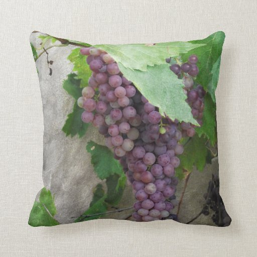 Uvas púrpuras en la almohada de la vid