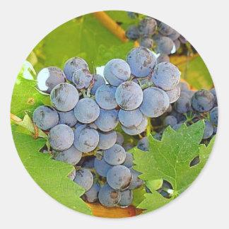 Uvas púrpuras en la foto de la cosecha pegatinas