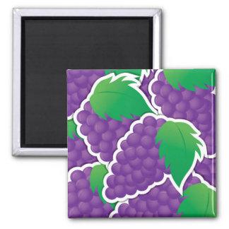 Uvas púrpuras enrrolladas imán cuadrado