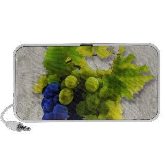 Uvas púrpuras y verdes altavoz