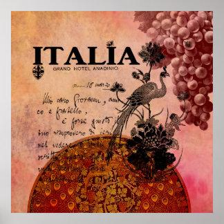Uvas rosadas Italia Póster