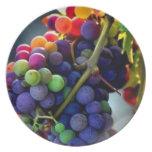 Uvas sabrosas platos para fiestas
