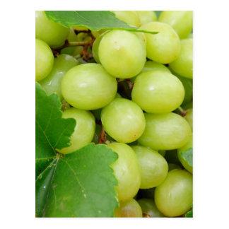 Uvas verdes tarjetas postales