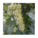 Uvas verdes tejas  ceramicas