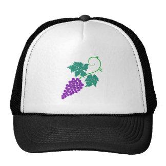 Uvas vid grapes grapevine gorras