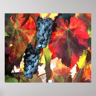 Uvas y hojas del tiempo de cosecha póster