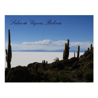 uyuni cacti postcard