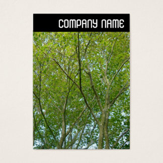 V Header - Japanese Maple Business Card