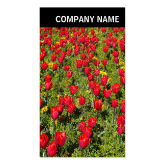 V Header - Photo - Tulips Business Card