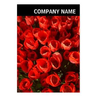 V Header - Photo - Tulips Large Business Card