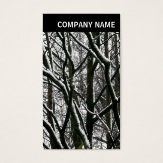 V Header - Photo - Winter Branches Business Card
