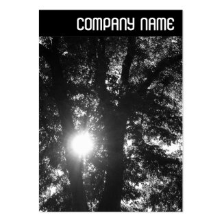 V Header - Sun Through Trees B&W Large Business Cards (Pack Of 100)