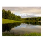 V reflexivos - Lago marshall Tarjetas Postales