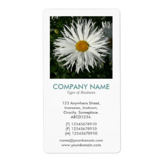 V Square Photo - Candy Tuft Daisy Shipping Label