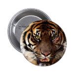 Va el tigre salvaje pin