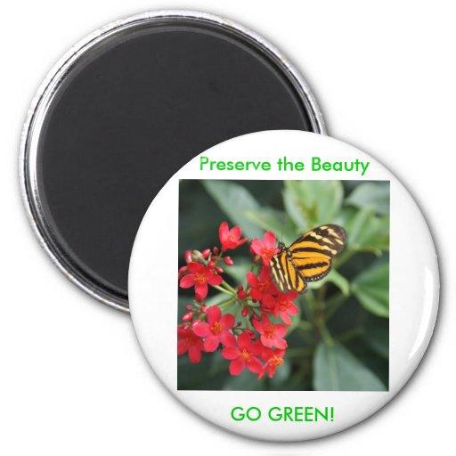 ¡VA EL VERDE! Colores de la mariposa de la primave Imán De Frigorifico