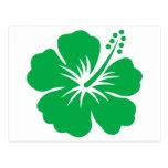 Va la flor verde del hibisco postal