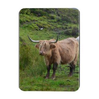 Vaca adorable de la montaña imán de vinilo
