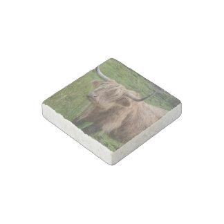 Vaca adorable de la montaña imán de piedra