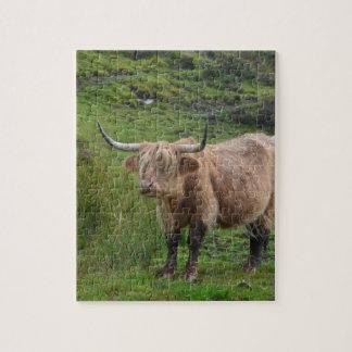 Vaca adorable de la montaña rompecabeza con fotos