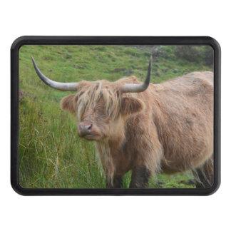 Vaca adorable de la montaña tapas de remolque
