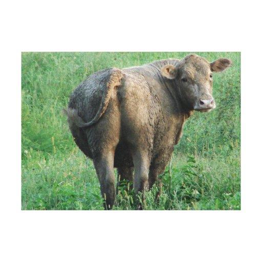 Vaca azul impresiones en lona estiradas