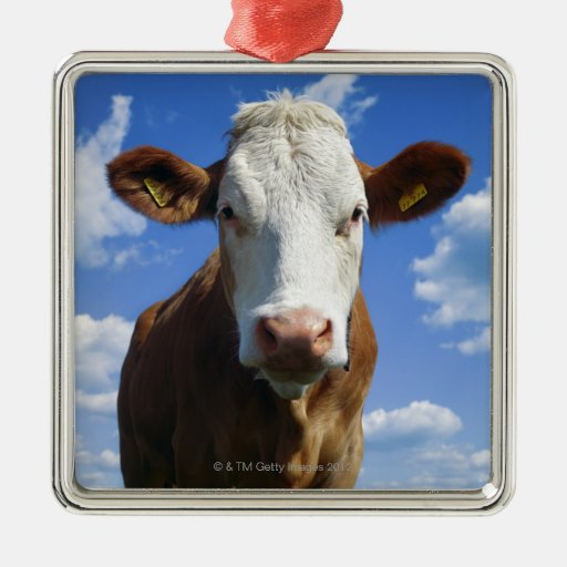 Vaca bávara contra el cielo azul adorno navideño cuadrado de metal