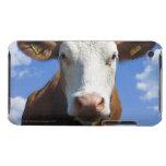 Vaca bávara contra el cielo azul funda para iPod de Case-Mate