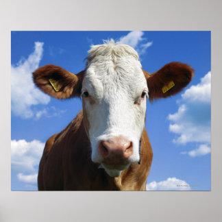 Vaca bávara contra el cielo azul póster