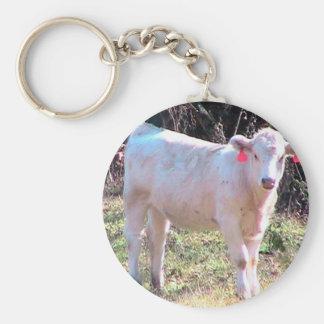 Vaca blanca con los oídos marcados con etiqueta en llaveros