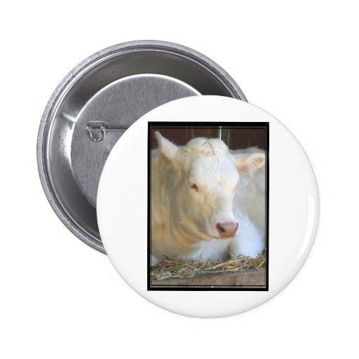 Vaca blanca pins