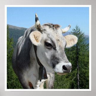 Vaca con Bell en montañas Posters
