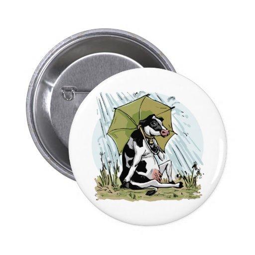 Vaca con el paraguas por los estudios de Mudge Pin