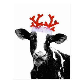 Vaca con las astas del reno tarjeta postal
