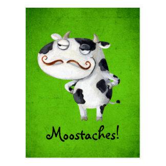 Vaca con los bigotes tarjeta postal