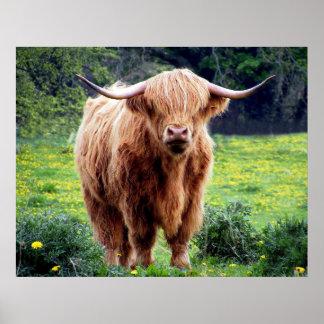 Vaca con paisaje hermoso de la naturaleza de los impresiones