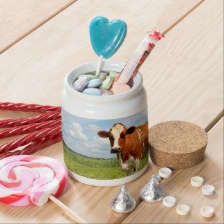 Vaca curiosa que se coloca en prado platos para caramelos